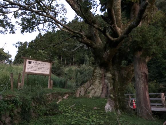 淡路島・おのころ神社ライトワークご報告_a0167003_19252201.jpg