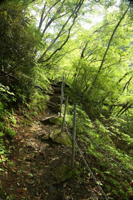 滝への道 _a0357206_22070249.jpg