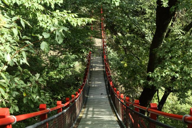 滝への道 _a0357206_22070973.jpg