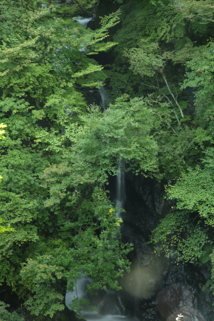 滝への道 _a0357206_22092878.jpg