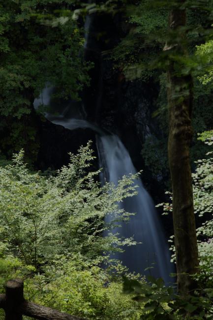 滝への道 _a0357206_22101416.jpg