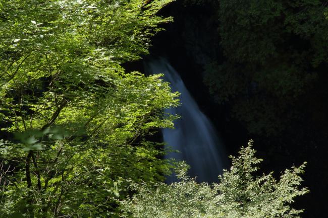 滝への道 _a0357206_22102122.jpg