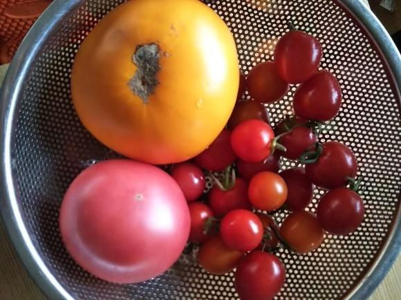 過去メシ  黄色いトマトで、トマトスープ_f0316507_17521898.jpg