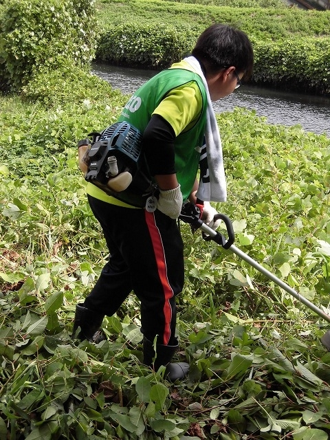 これから花を咲かせるヒガンバナがきれいに見えるよう「滝川の草刈り清掃」に80名が参加!_f0141310_07570672.jpg