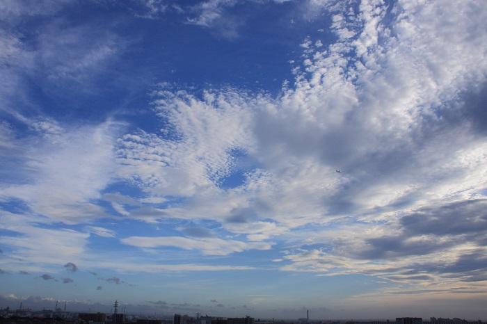 層状雲(高積雲) : 日々の風景