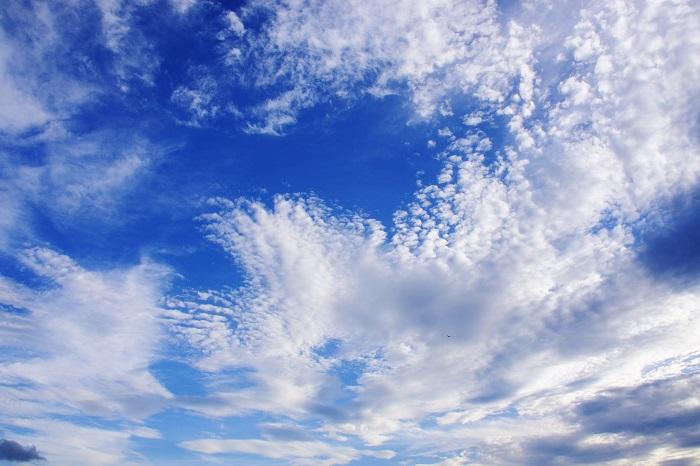 ひつじ雲(高積雲) : 日々の風...