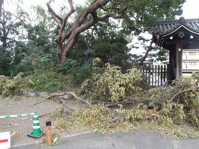 京の三町堂ウオーク_b0044663_17415677.jpg
