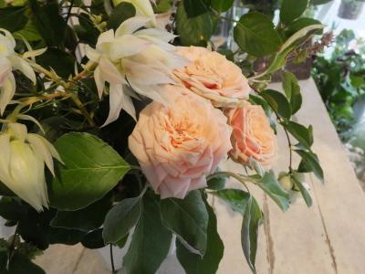 オークリーフ花の教室(大草さんと清水さんの作品)_f0049672_16594514.jpg