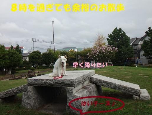 f0121712_14054406.jpg