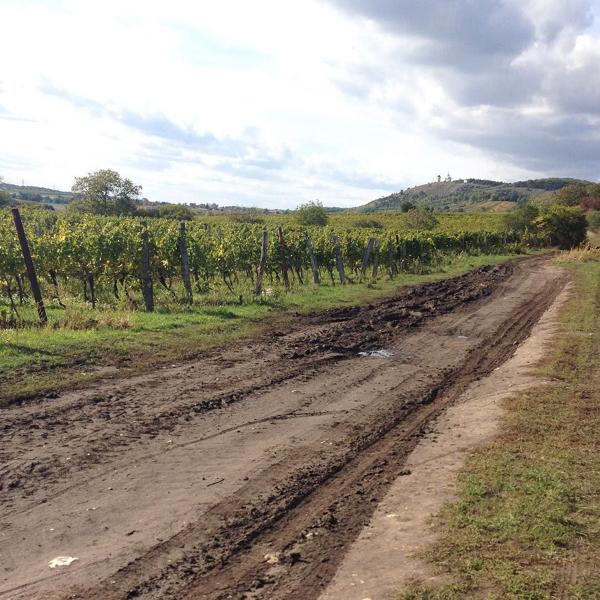 チェコの国境エリアを自転車で巡る旅_c0060143_08183746.jpg