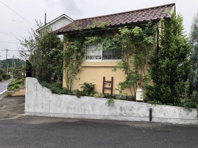 台風後の庭「家の外回り」_a0243064_18170884.jpg