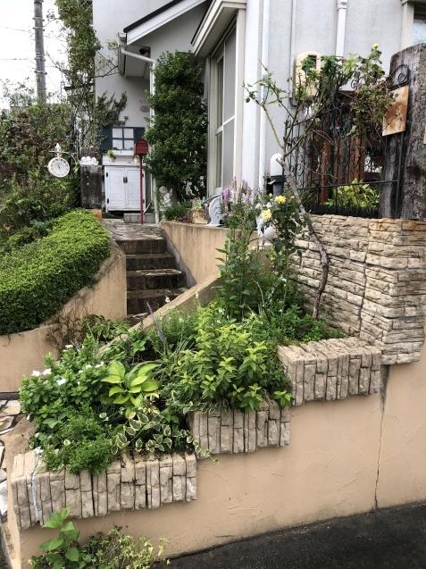 台風後の庭「家の外回り」_a0243064_18235289.jpg