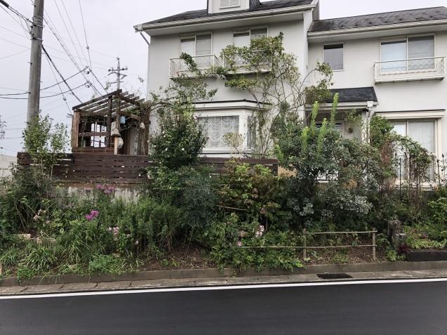 台風後の庭「家の外回り」_a0243064_18263179.jpg