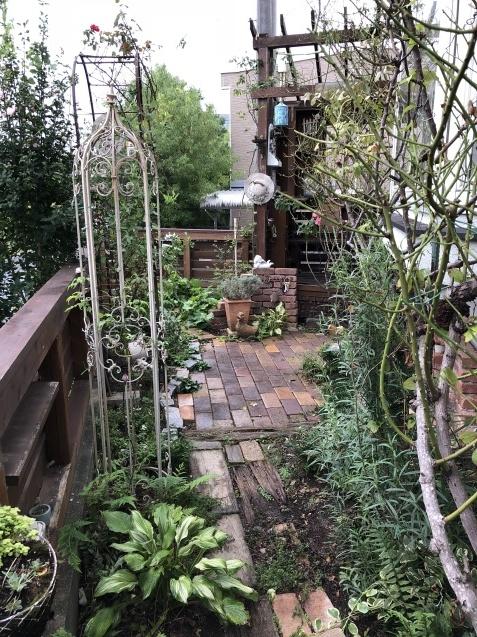 台風後の庭「家の外回り」_a0243064_18264801.jpg