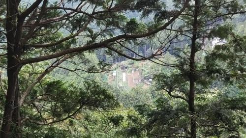山登り③高山不動尊と関八州見晴台_e0341099_08110859.jpg