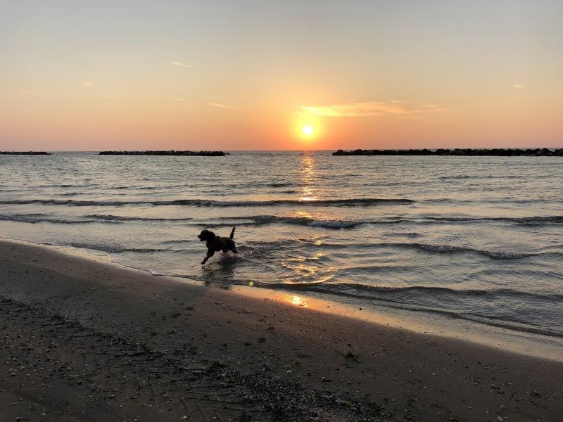 アドリア海の朝日🌅 2018 夏_b0246303_06015918.jpg