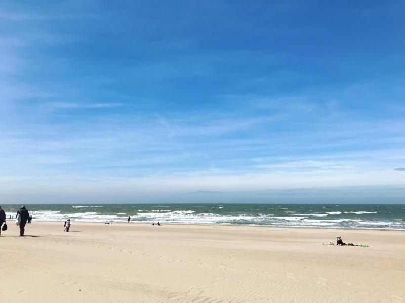 青空 なので 海へ。_d0355818_16424699.jpg