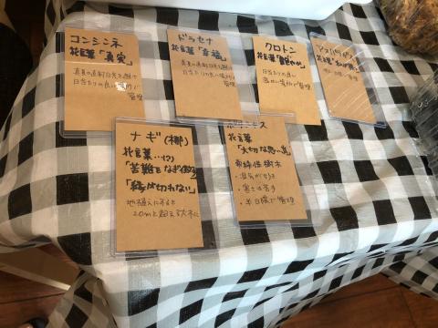 ミニ盆栽ワークショップ_e0230154_21062160.jpg