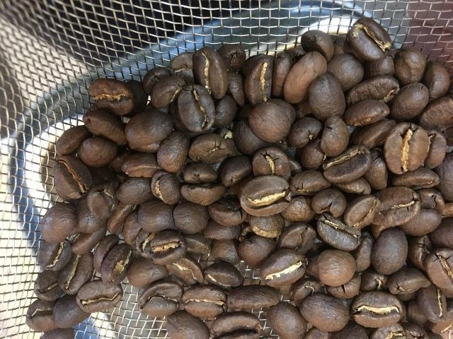 new beans_b0183681_12234795.jpeg