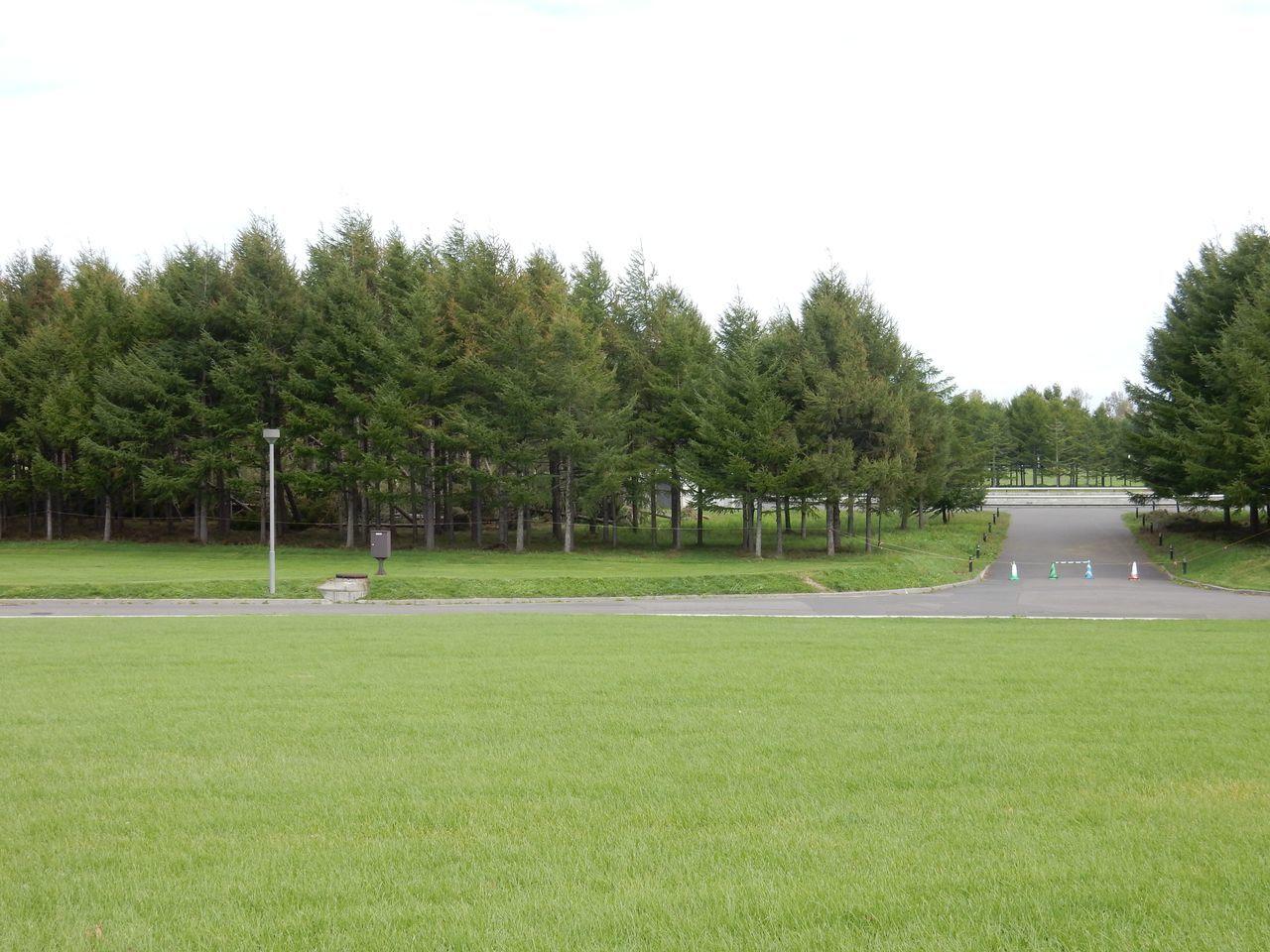 モエレ沼公園とさとらんどは台風被害_c0025115_21544980.jpg