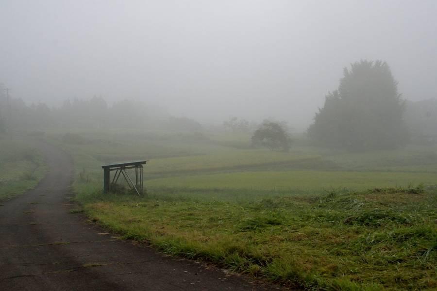 濃霧_b0223668_11540137.jpg