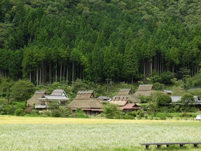 美山 かやぶきの里_e0048413_22102343.jpg