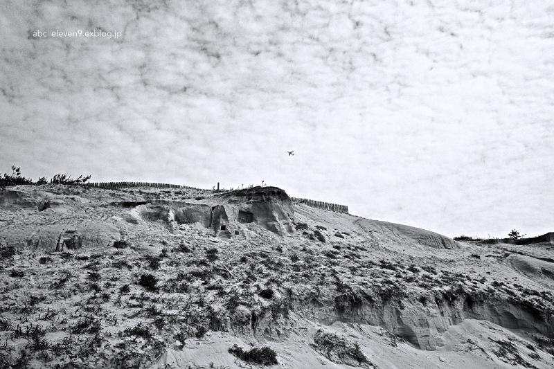 sand hill_f0315034_14554909.jpg