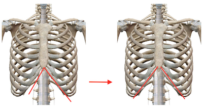 秋の肝臓疲労は「均整センター」で解消できます 〜ある日の施術より〜_e0073240_07314447.jpg
