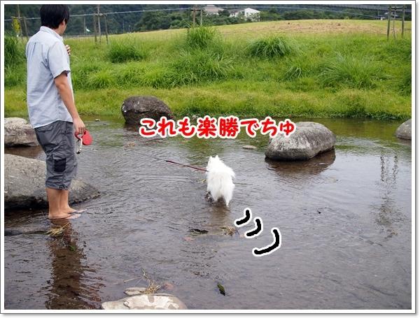 d0013149_00015585.jpg