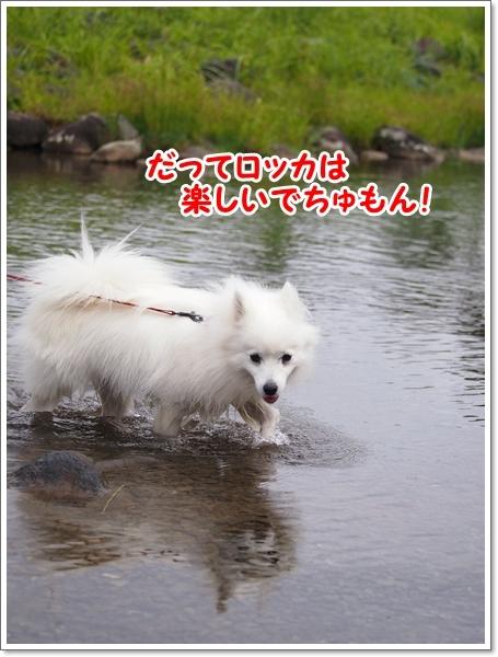 d0013149_00022314.jpg