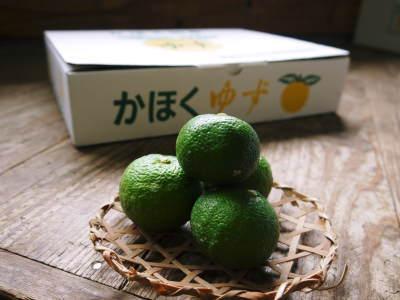 香り高き柚子(ゆず) 令和元年度の香り高き『青柚子』本日より出荷スタート!大好評販売中!!_a0254656_17241212.jpg