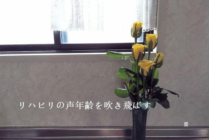 f0379160_14343214.jpg