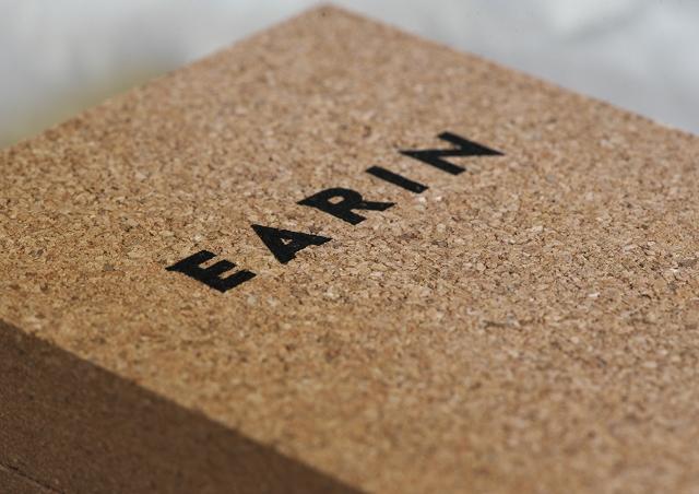 EARIN M-2 1_f0018464_21571469.jpg