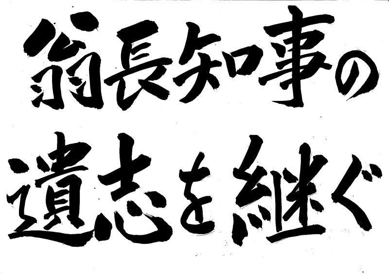 辺野古「ぜったい埋めちゃダメ!」リーフレット_d0391192_13532739.jpg