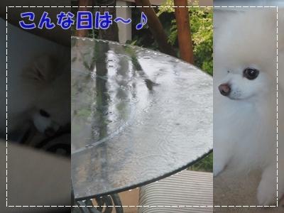 b0167519_12564693.jpg