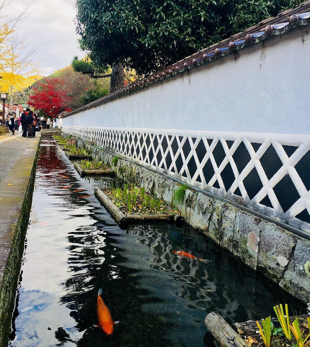 津和野町の殿町通りを散策_c0112559_08535364.jpg