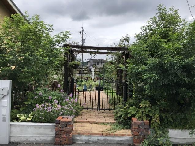 庭入り口の「トラノオ」_a0243064_20181014.jpg