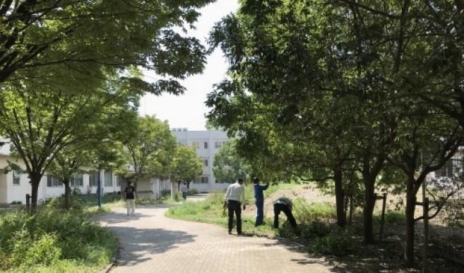 3か月ぶり キャンパスの清掃活動開始_a0346704_20041971.jpg