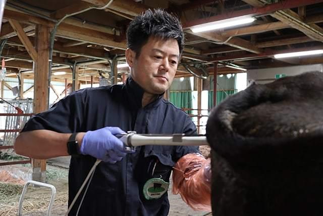 黒毛和牛のOPU(経膣採卵)_c0126281_11305309.jpg