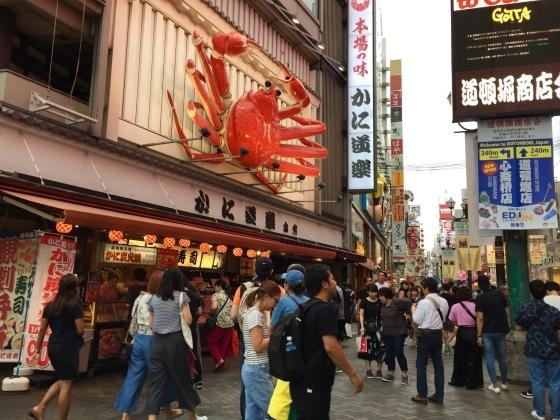 湯豆腐が食べたい_a0258686_22222829.jpeg