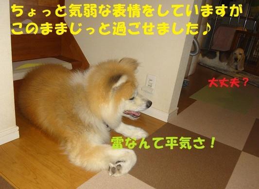f0121712_00153112.jpg