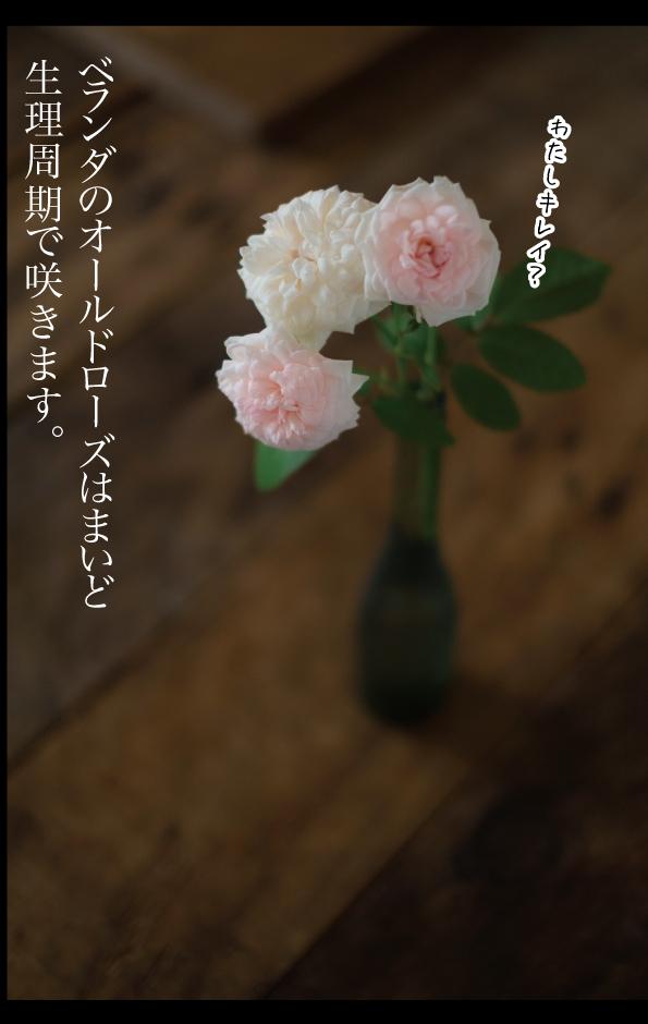 a0358016_15520670.jpg