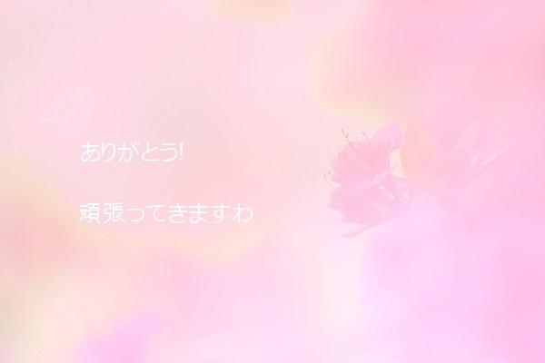 b0119421_15483676.jpg