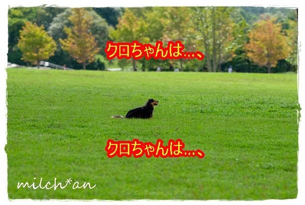 b0115642_21135205.jpg