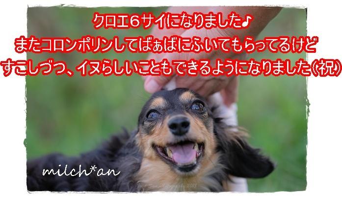 b0115642_21135594.jpg