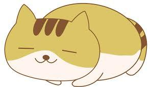 猫背_b0065555_07284647.jpg