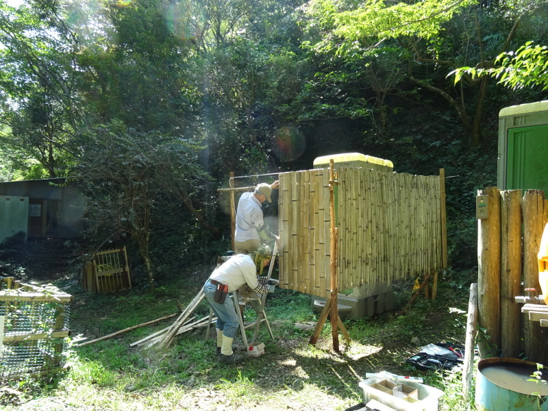 台風被害の復旧作業継続・・・孝子の森_c0108460_17594495.jpg