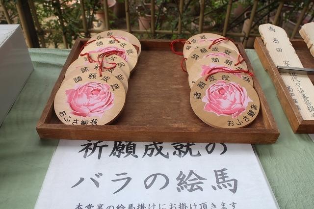 本薬師寺のホテイアオイと今井町ウオーク_b0044663_15154143.jpg