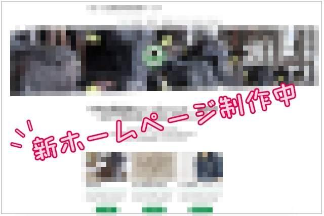 黒毛和牛のOPU(経膣採卵)_c0126281_11194314.jpg