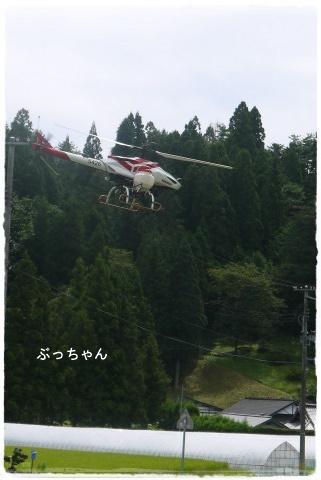 f0353990_19055522.jpg